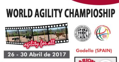 Live streaming IFCS World Agility Championships